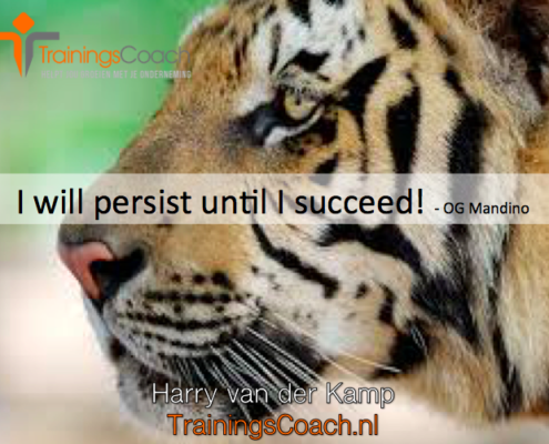 I will persist until I succeed!